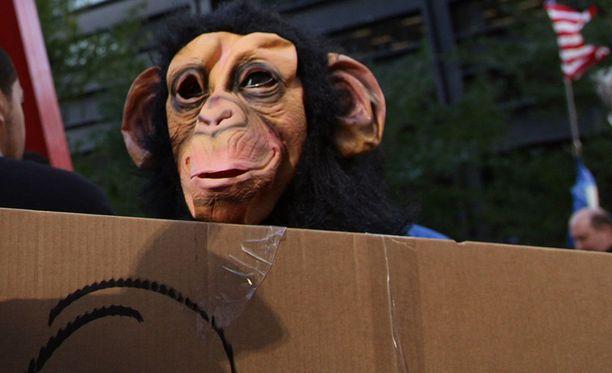 Äidin mukaan apinapuku oli kauttaaltaan karvainen, mutta kasvot pelottavat ja silmät olivat tyhjät. Kuvituskuva.
