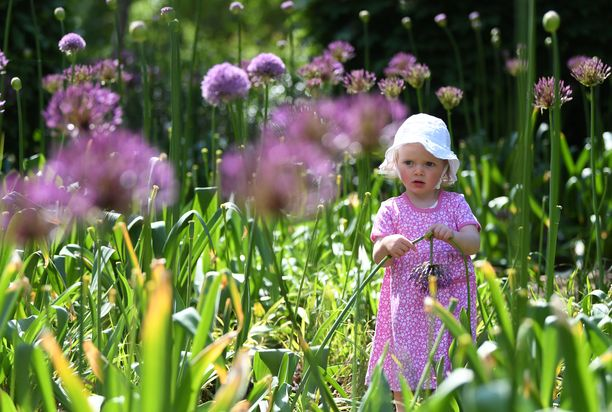 Toukokuussa lapsi kävi ihastelemassa Kew'n kasvitieteellistä puutarhaa Lontoossa.