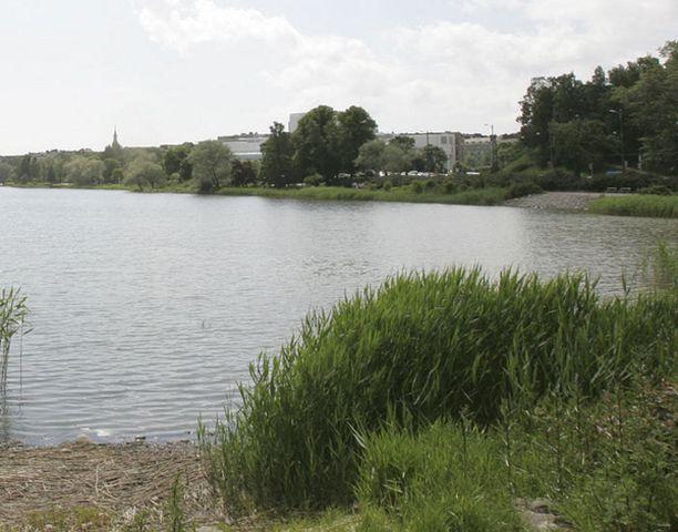 Töölönlahden vesi on ollut tänä kesänä jopa parempaa kuin Hietarannan vesi.