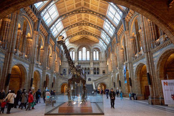 Lontoon luonnonhistoriallisen museon dinosaurusten seurassa voi yöpyä.