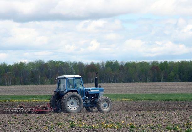 Nykyinen maataloustukipolitiikka suosii osin myös järjettömiä toimintamalleja.