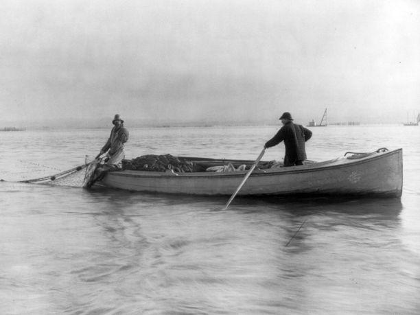 Astorialaiskalastajat nostavat lohia paattiin vuonna 1895. Masto on laskettu alas soutumies eli pullari vetelee airoista ja kapteeni kokee käsinkudottua, puolen kilometrin pituista verkkoaan.