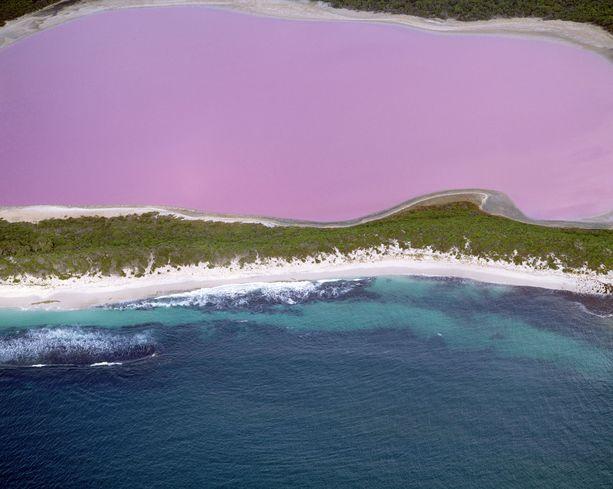 Lake Hillier on varsin ruusuisen värinen.