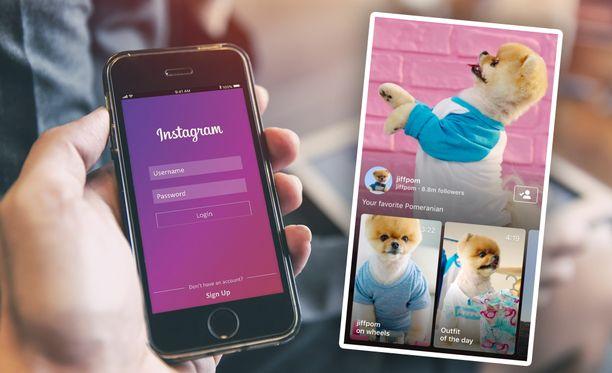 IGTV-videot alkavat näkyä myös Instagramin syötteessä.