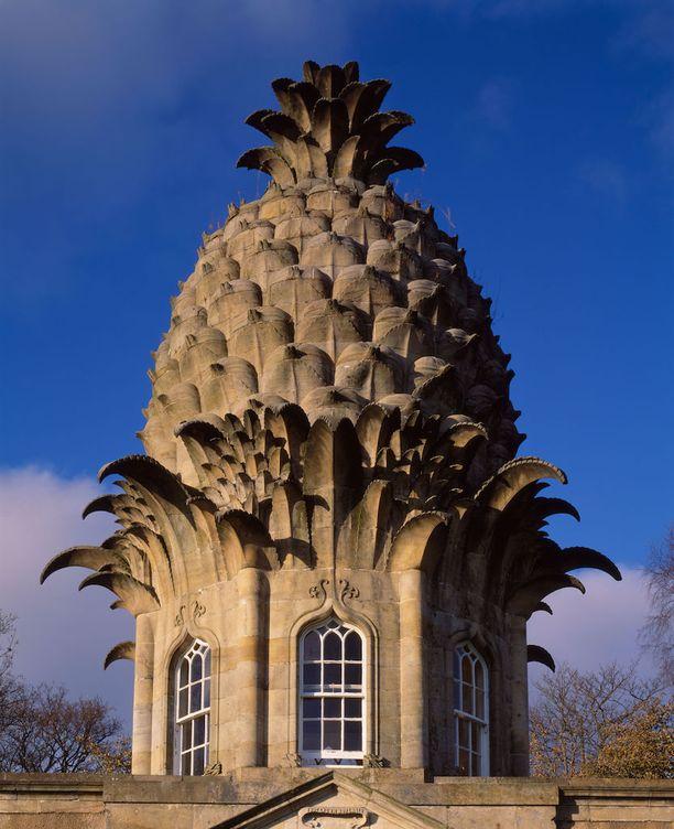 Erikoinen ananastorni on varsin taidokkaasti rakennettu.