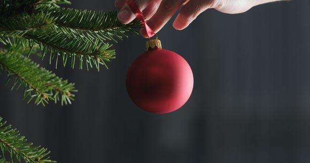 -Sisustukseen panostetaan yhä enemmän ja joulukoristelut halutaan laittaa siksikin reilusti ennen joulua, arvioi toimitusjohtaja  Joulukuusikauppa.fi:stä joulukuusten yhä aikaistuvampaa kauppaa.