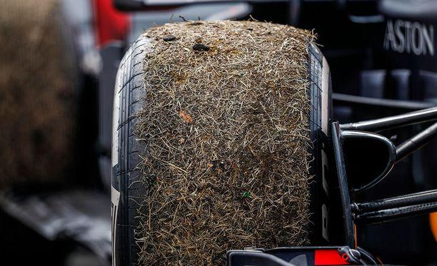 Kuvan rengas ei liity tapaukseen (Daniel Ricciardo keskeytti Saksan GP;n jo kierroksella 29).