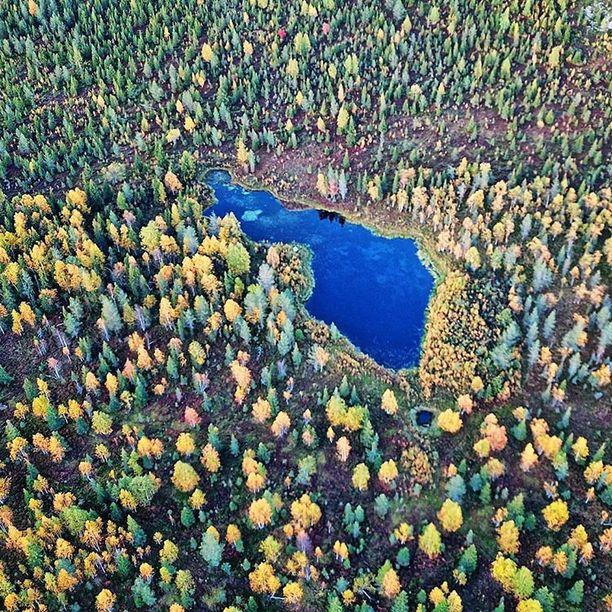 Lapista löytyy Suomen muotoinen järvi, Neitokainen. Tältä se näytti viime syyskuussa ruskan aikaan.