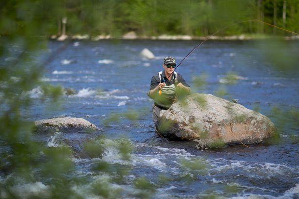 Jasper Pääkkönen tunnetaan armottomana kalamiehenä ja luontaisten kalakantojen suojelijana. Arkistokuva Siikavedeltä 2013.