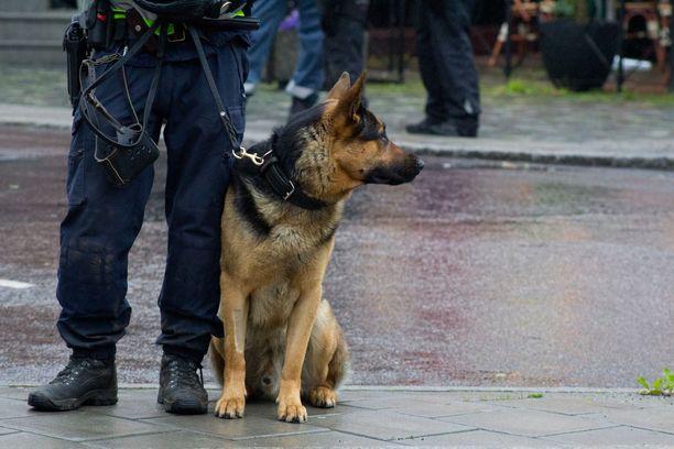 Kuvan poliisikoira ei liity tapaukseen.