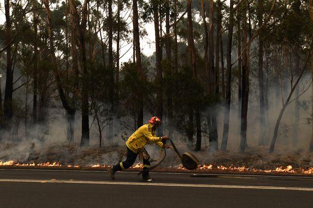 Australian maastopalokriisille ei näy loppua.
