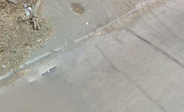 Kun Googlen auto on oletettavasti kriittisellä kohdalla, ei koirasta näy jälkeäkään.