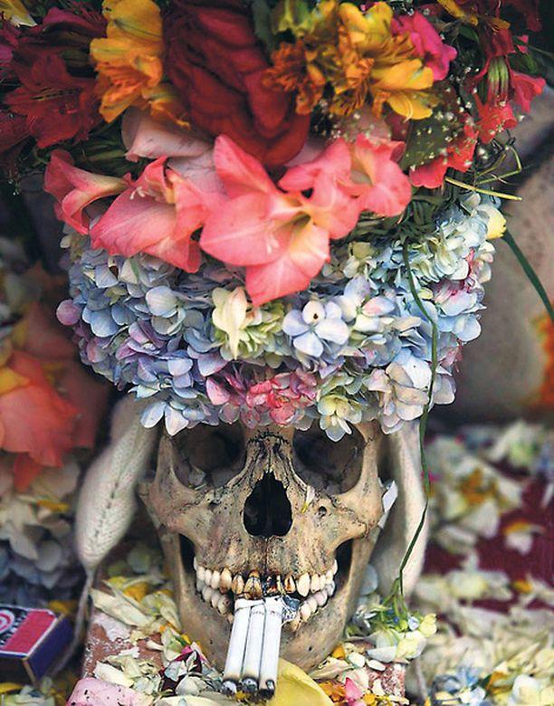 Boliviassa juhlitaan pyhimysten päivää ja sen kunniaksi hautausmailta löytyviä pääkalloja koristellaan näyttävästi kukka-asetelmilla. Kallojen uskotaan suojelevan ihmisiä pahoilta hengiltä.