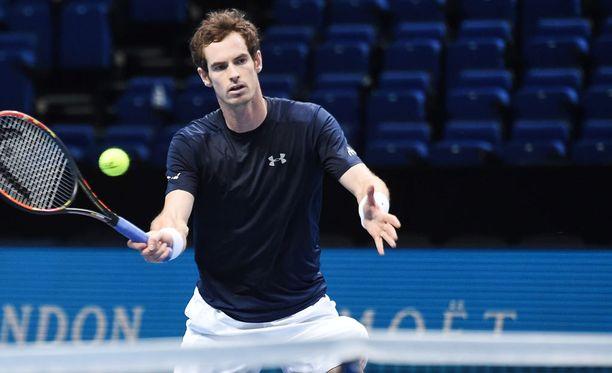 Andy Murray on Davis Cup -viikonlopun suurin tähti.
