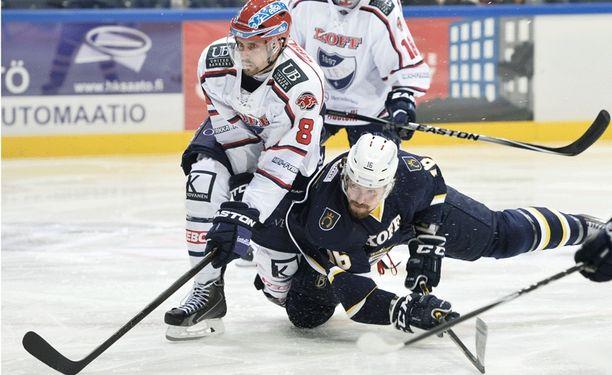Daniel Grillfors jatkaa HIFK:ssa.
