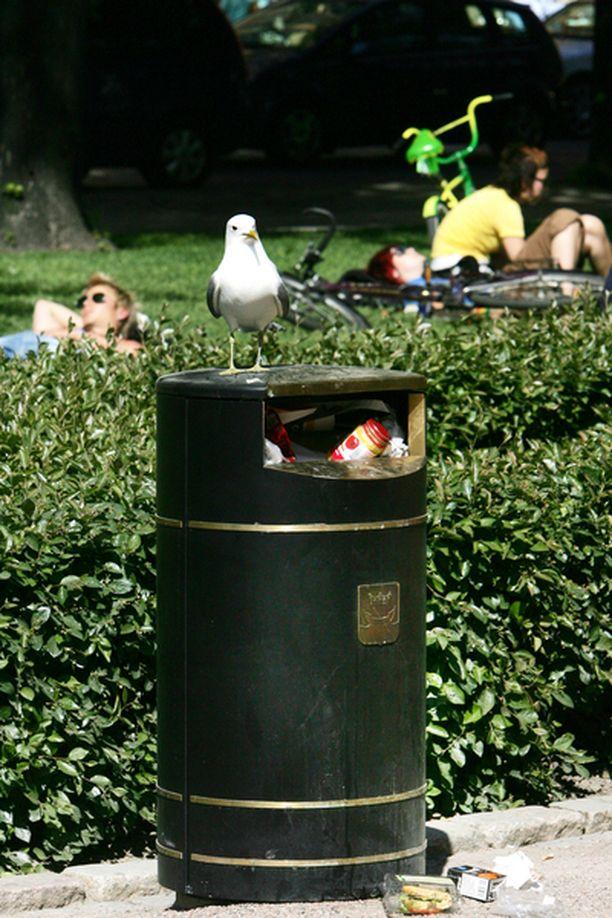 Puhuvat roskikset saattavat tulla takaisin katukuvaan.