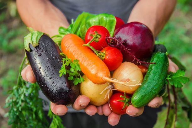 Kasvikset ovat suuressa osassa terveellistä pohjoismaista ruokavaliota.