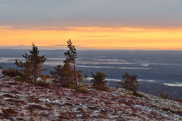 Luoston huipulta on hyvä ihailla Pyhä-Luoston kansallispuistoa.