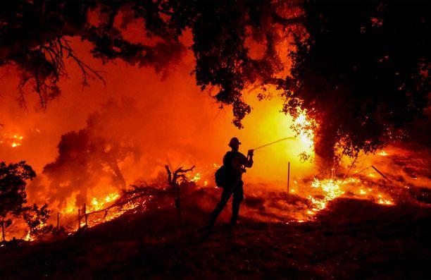 Paloa on sammuttamassa satoja palomiehiä.