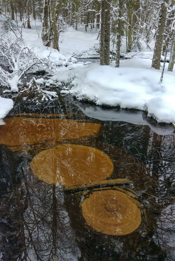 Jämijärven uhrilähde pysyy sulana talvellakin.