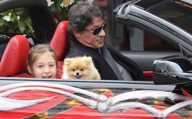 Mustangin vauhdista nauttimassa myös Stallonen tytär Scarlet Rose, sekä perheen koira.