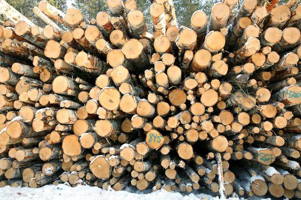 Asiantuntijoiden mukaan Suomelle voi tulla miljardien eurojen kulut siitä, että hiilinieluja pitäisi kompensoida muilla keinoilla.