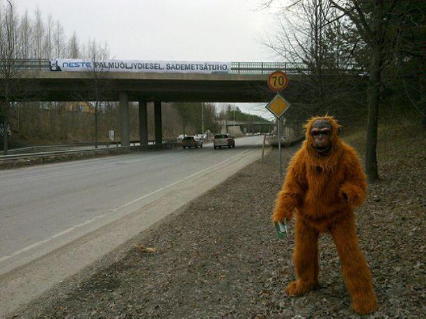 Tampereella Kekkosentiellä Greenpeacen orangit jakoivat autoilijoille tietoa Neste Oilin palmuöljydieselistä.