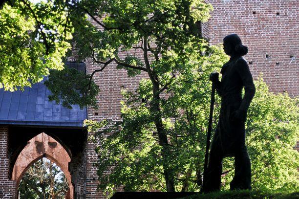 Toomemäen puistoalue on laaja ja kaunis. Tuomiokirkon raunioiden tuntumassa on nuorena kuolleelle runoilijalle Kristjan Jaak Petersonille omistettu muistomerkki.