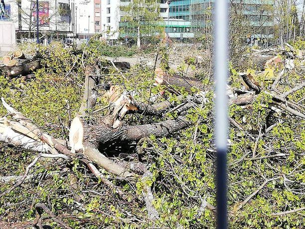 Mielipiteet puiston uudistamisesta jakautuivat voimakkaasti.