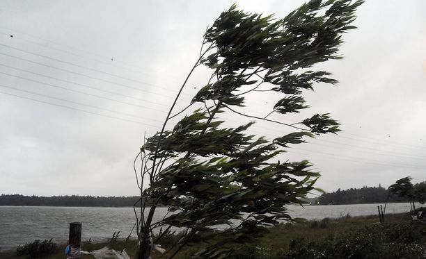 Länsirannikolla tuuli on hönkäillyt hirmuista vauhtia. Kuvituskuva.