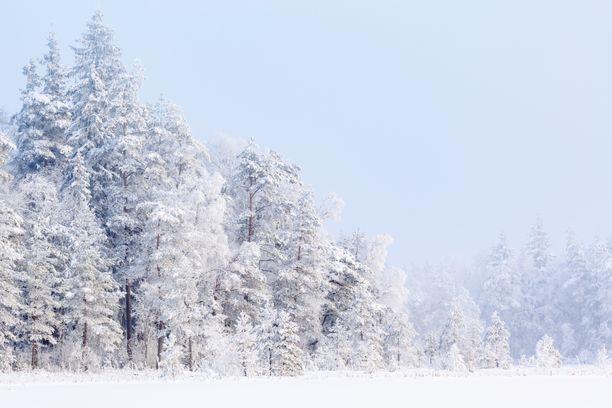 Tammikuun lopusta voi tulla hyvinkin kylmä, kertoo Foreca.
