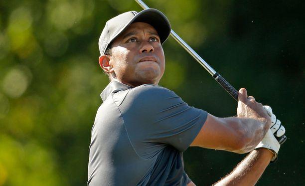 Tiger Woods on iskussa.