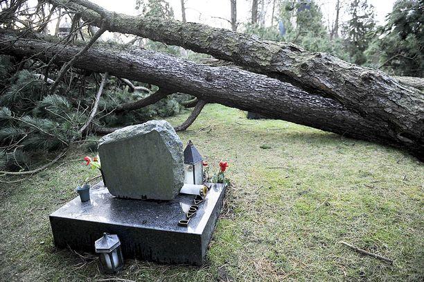 Pertti Pasasen haudan ympärille kaatui puita tapaninpäivän myrskyssä 2011. Myrskyn jälkeen säädetyn lain mukaan myrskyn tai lumikuorman aiheuttama keskeytys saa kestää maksimissaan kuusi tuntia asemakaava-alueella ja 36 tuntia asemakaava-alueen ulkopuolella.