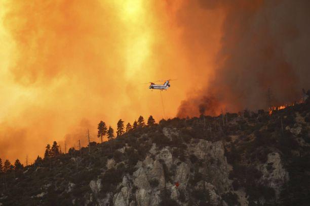 Valtavat pensaspalot piinasivat Kaliforniaa syyskuussa.
