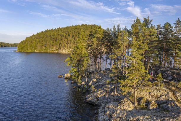 Keskiviikkona 21.7. myönnettiin uusi malminetsintälupa Enonkoskelle, jonka läheisyydessä sijaitsee Koloveden luonnonsuojelualue.