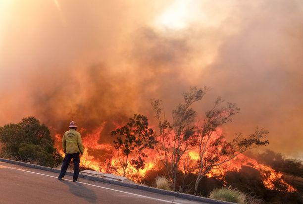 Kalifornian maastopaloissa on tuhoutunut lähes 10 000 rakennusta.