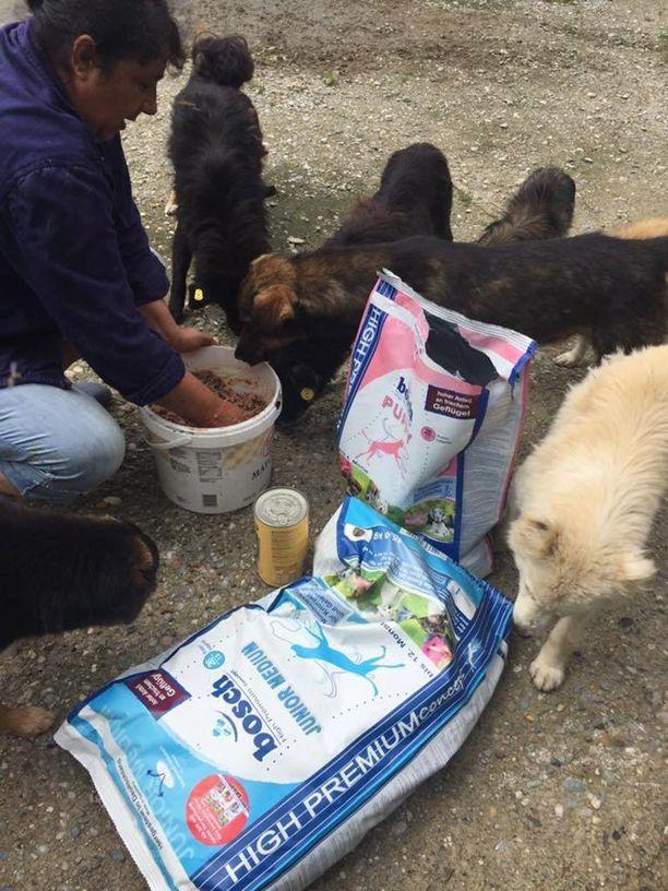 Kirputtajat ry haluaa ensisijaisesti avustaa koiratarhaa sterilisoinneilla.