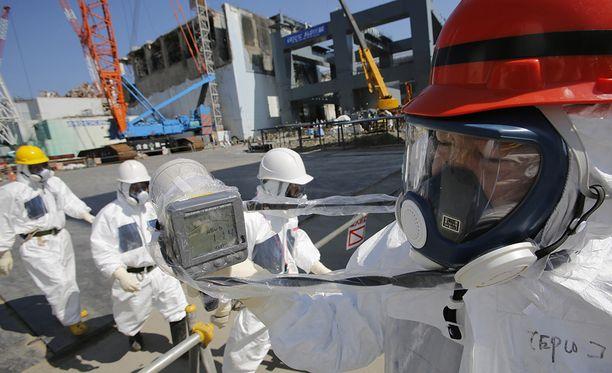 Varsinaisia puhdistustöitä ei ole päästy edes aloittamaan. Radioaktiivista materiaalia on arviolta 600 tonnia.