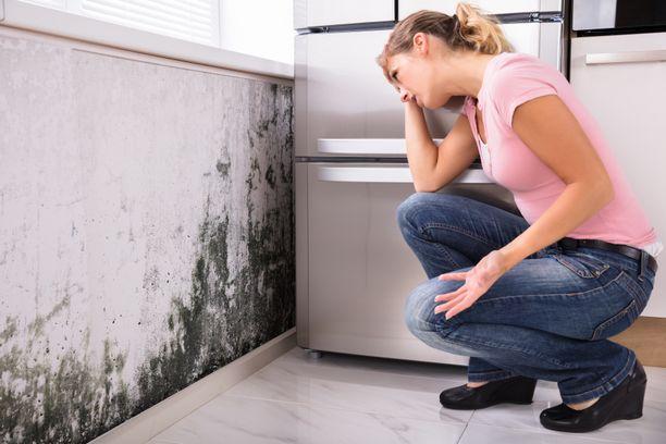 Kosteusvaurion korjaaminen voi olla pitkä prosessi.