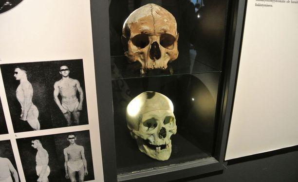 Rikosmuseon kokoelmissa on noin 6000 esinettä, joista valtaosa on peräisin viime vuosisadalta.