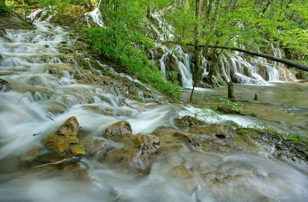 Plitvice on Kroatian vanhin kansallispuisto.