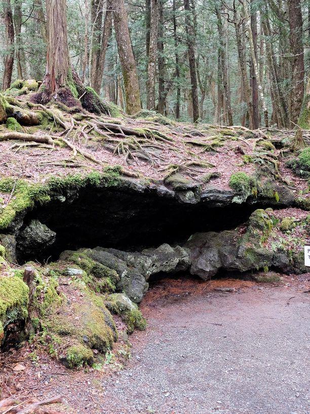 Aokigaharassa on paljon luolia.