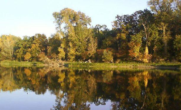 Liberlandin alue on pääasiassa suota ja metsää Tonavan rannalla.