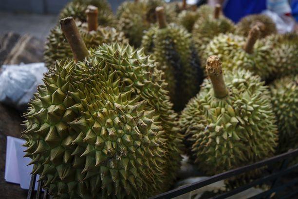 Hedelmien kuningas, durian, on näyttävännäköinen ja -hajuinen hedelmä.