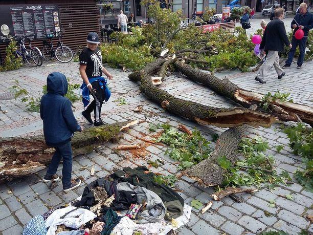 Maahan syöksynyt puun osa oli melko kookas.