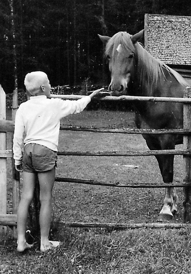 – Mikkelin lähellä Otavassa on vanha maatilamme. Lähestyn hevosta pientä varovaisuutta noudattaen.