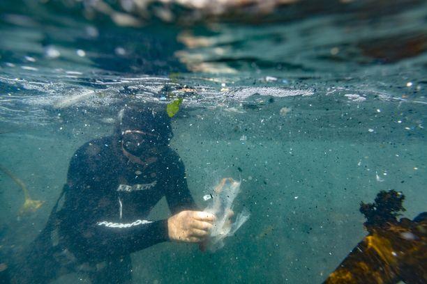 Merissä on miljoonia ja taas miljoonia palasia muovia ja mikromuovia. Sukeltajat keräsivät roskia talteen Etelä-Afrikan rannikolla tammikuussa.