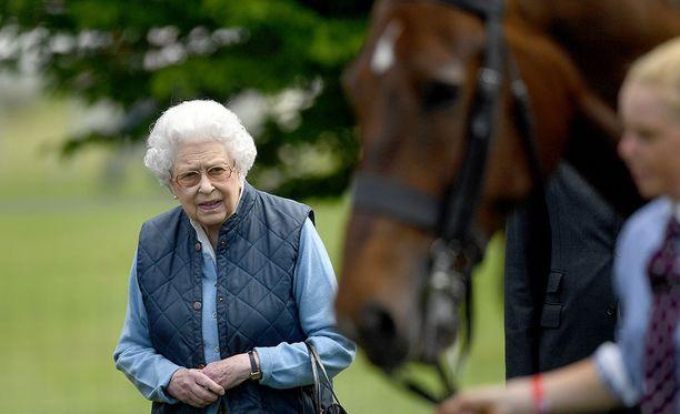 Kuningattaren tiedetään rakastavan eläimiä, erityisesti koiria ja hevosia.