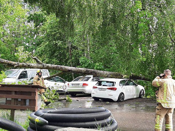 Myrskytuuli kaatoi puun autojen päälle Kirkkonummella lauantaina.