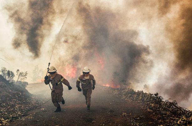 Portugalilaiset ja espanjalaiset palomiehet käyvät epätoivoista taistelua liekkejä vastaan Portugalin Perdogao Grandessa.
